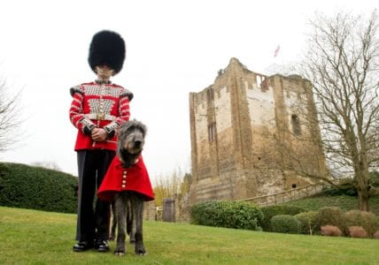 Guildford's Armed Forces' Day National Event To Launch With A Bang
