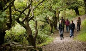 family walking in Devon