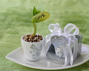 unique-wedding-favors-for-people